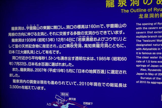 DSC01738[1]