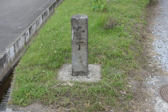 DSC01908[1]