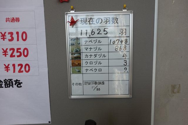 DSC05396[1]