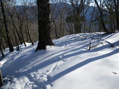 登山道に合流