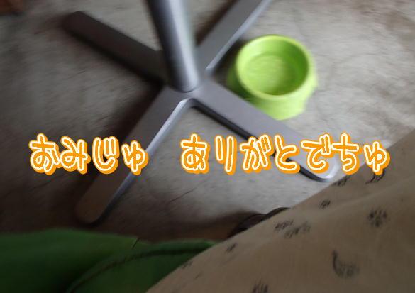 14_201310181013053f4.jpg