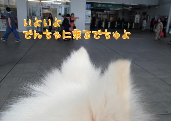 9_20131018101213fab.jpg