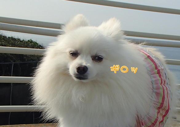 M9_201308051117193e4.jpg