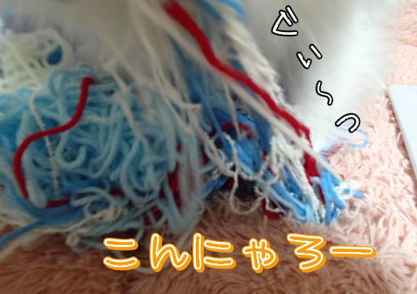 m3_20131025104122dde.jpg