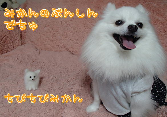 m6_2013101320182904c.jpg