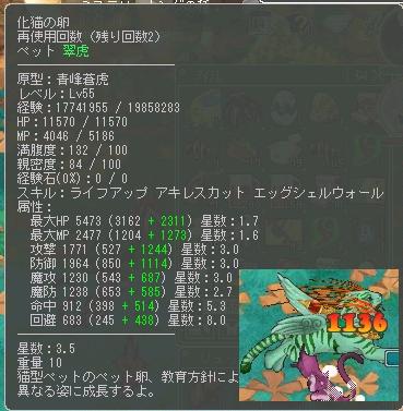 化け猫55