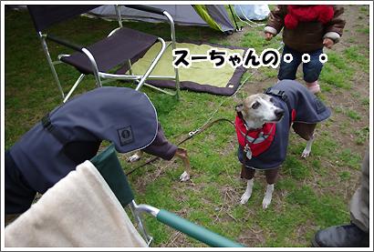 20130330_15.jpg