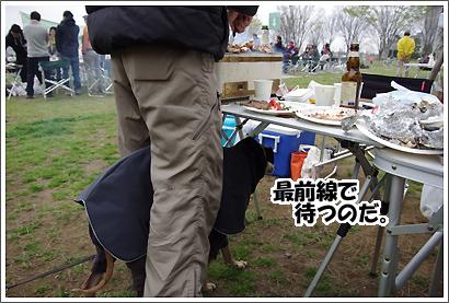 20130330_19.jpg