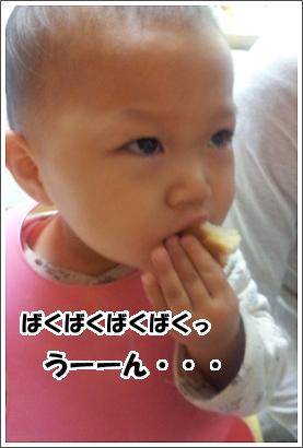20130407_3.jpg
