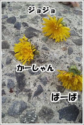 20130423_11.jpg