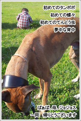 20130507_31.jpg