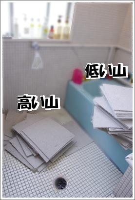 20130523_10.jpg