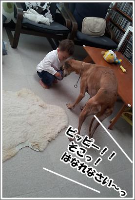 20130608_23.jpg