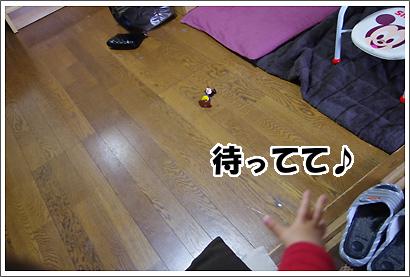 20130608_24.jpg