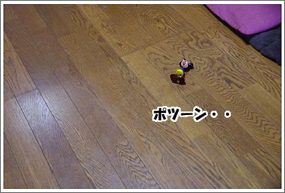 20130608_25.jpg
