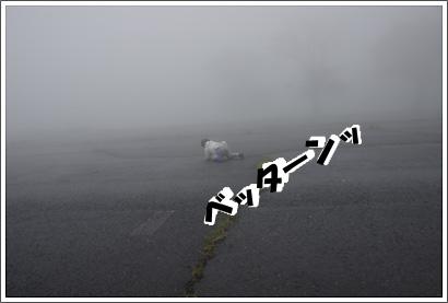 20130706_10.jpg