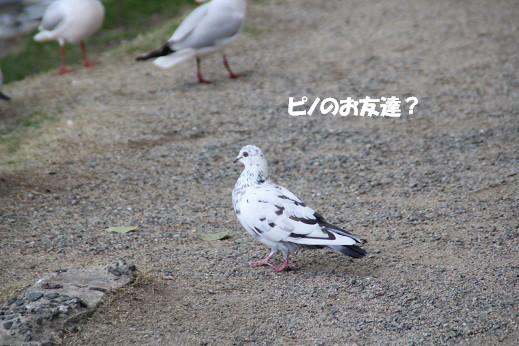 X4_3814.jpg