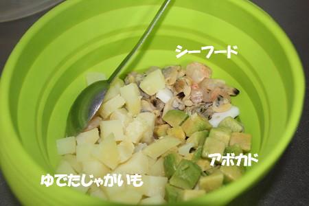 c_6349.jpg