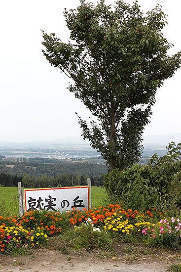 20140916_5.jpg