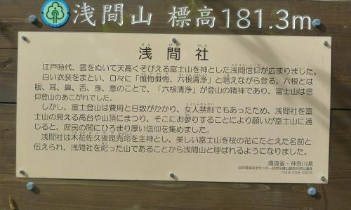 P1180833.jpg