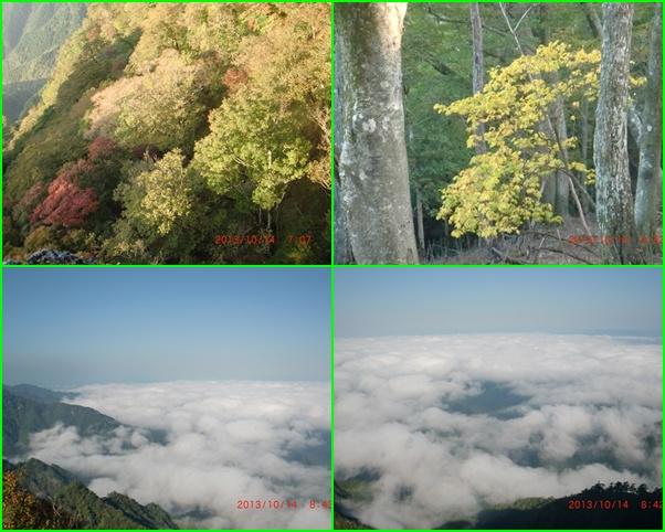 014 紅葉と雲海