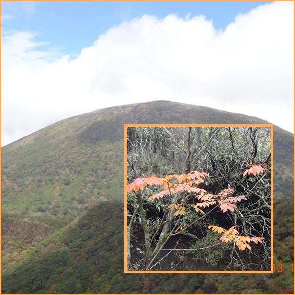 005 韓国岳