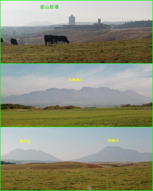 001 産山牧場