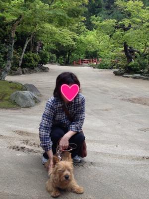 蜀咏悄+1+(5)_convert_20130501222603