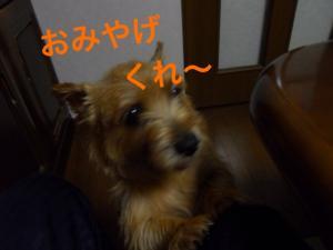 蜀咏悄+2+(1)_convert_20130602205324