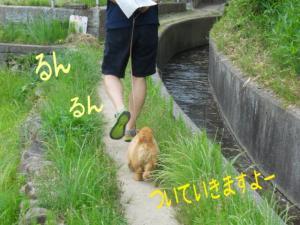 蜀咏悄+2+(3)_convert_20130608215754