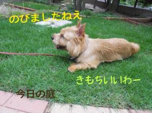蜀咏悄+(8)_convert_20130609214410