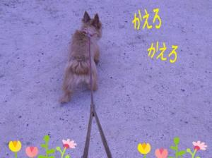 蜀咏悄+(2)_convert_20130613225806
