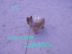 蜀咏悄+(3)_convert_20130613225820