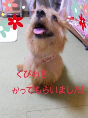 蜀咏悄+(9)_convert_20130613225945