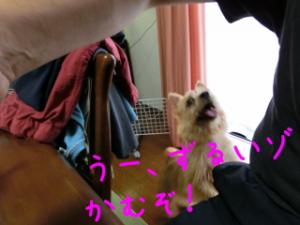 蜀咏悄+2_convert_20130619080247