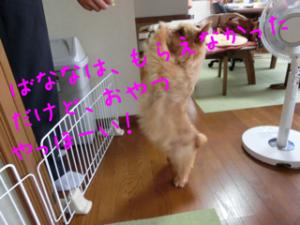 蜀咏悄+2+(1)_convert_20130619080215