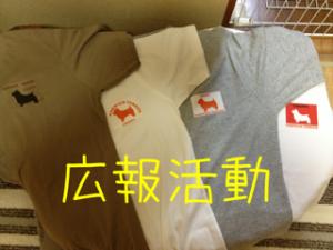 蜀咏悄_convert_20130620223558