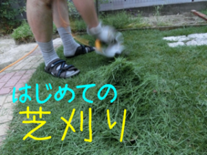 蜀咏悄+2_convert_20130620224941