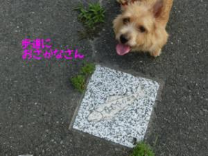 蜀咏悄+(3)_convert_20130630222053
