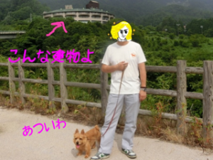 20130630222610fd6.png