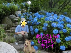 蜀咏悄+(3)_convert_20130630222035