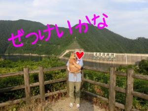 蜀咏悄_convert_20130630223240