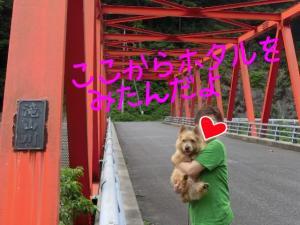 蜀咏悄+(1)_convert_20130630223652