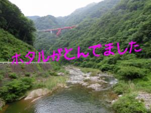 蜀咏悄_convert_20130630224142