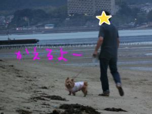 蜀咏悄_convert_20130716093539