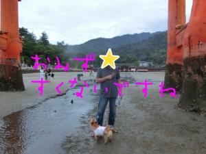 蜀咏悄+(4)_convert_20130716092811