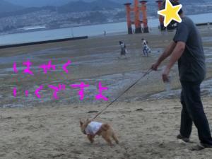 蜀咏悄+(5)_convert_20130716092910