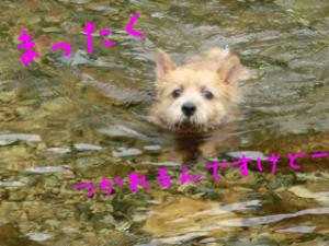 蜀咏悄+3_convert_20130807142637