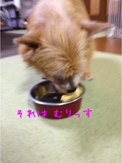 fc2blog_20131117213652b22.jpg