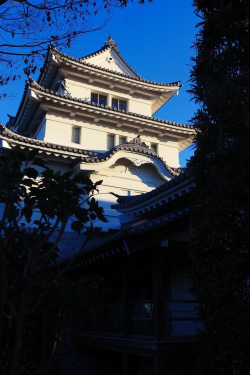2014_0110_2.jpg